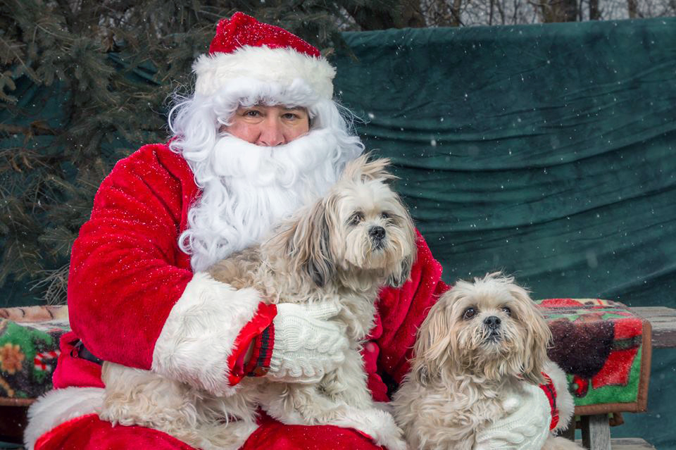 small dogs part family santa christmas