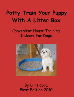dog litter box training video
