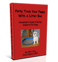 image potty training dog puppy litter box