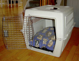 dog crate train a puppy