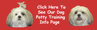 image dog potty training puppy house training dog litter box