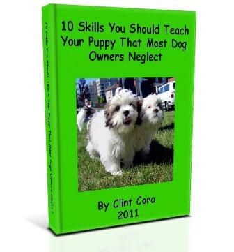 image potty training dogs dog litter box training puppies
